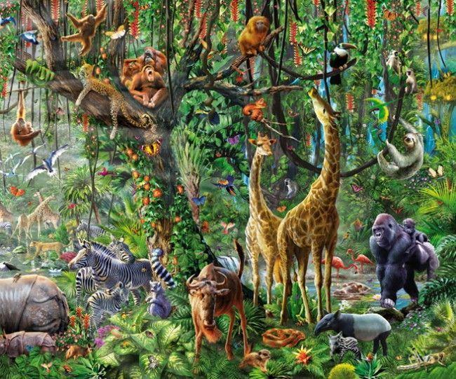 Пазлы картинки о природе
